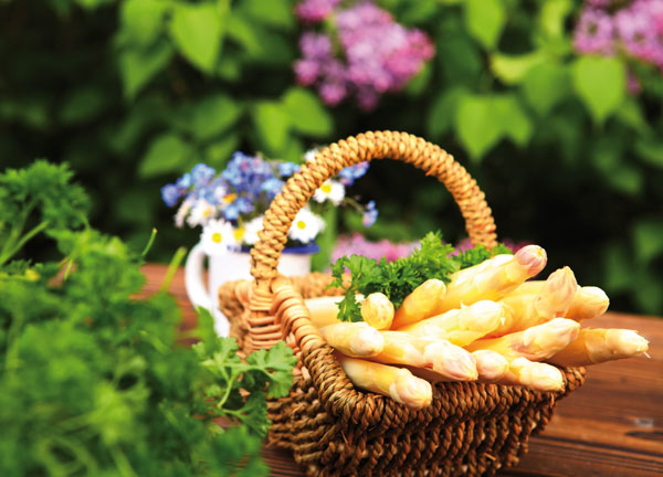 Saisonale Spezialitäten im Restaurant